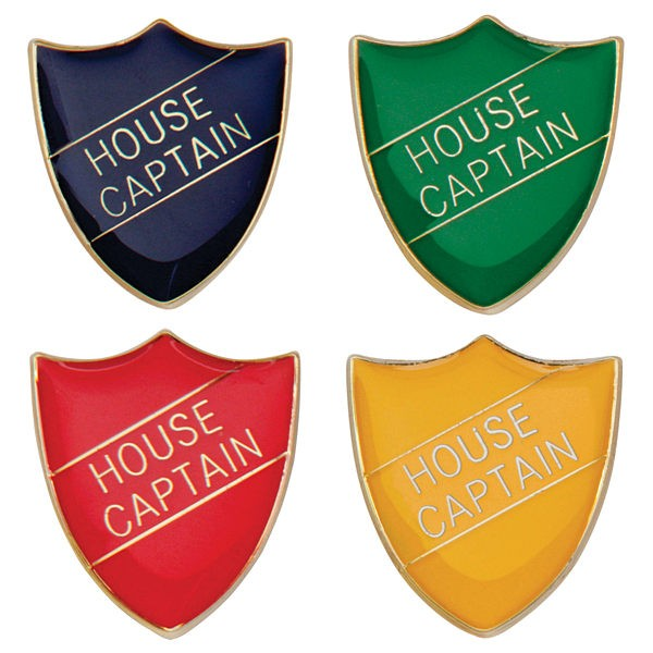 Scholar Pin Badge House Captain