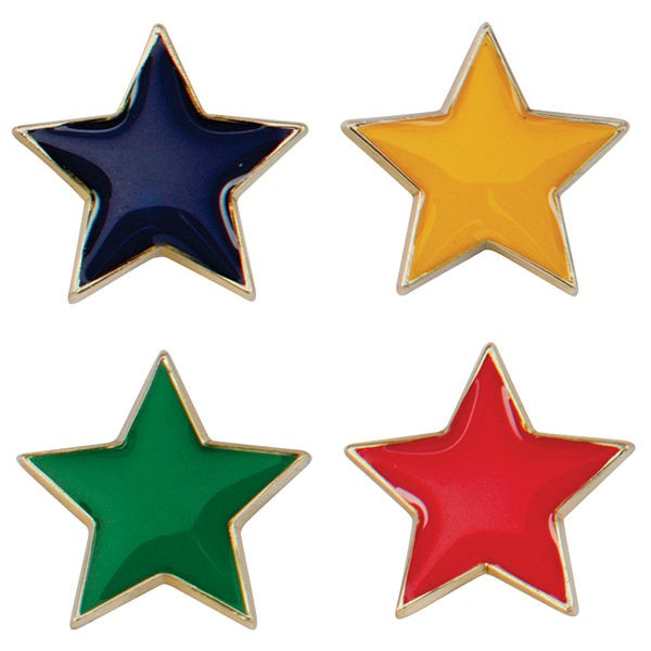 Scholar Pin Badge Star