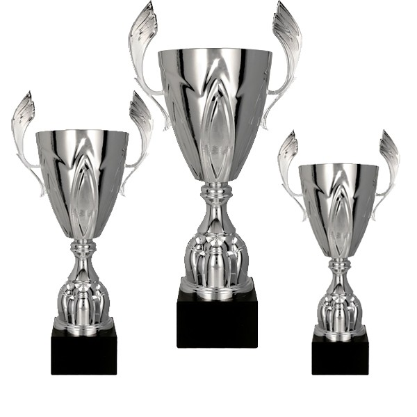 Silver Cup with Handles 1st, 2nd, 3rd Set