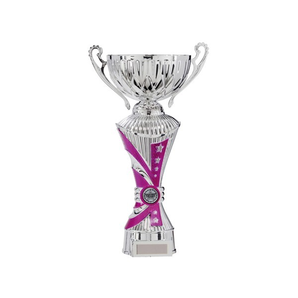 All Stars Heavyweight Cup Pink & Silver