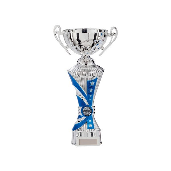 All Stars Heavyweight Cup Silver & Blue
