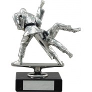 Silver Martial Arts Trophy