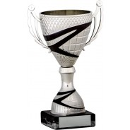 Silver Cup with Black Stripe Detail