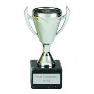 Chevron Silver Cup