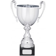 Silver Cup With Handles
