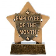 Mini Star Employee of the Month