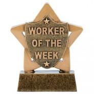 Mini Star Worker of the Week
