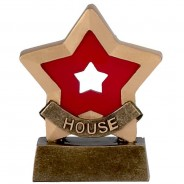 Mini Star House