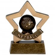 Mini Star Netball