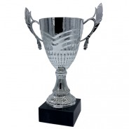 Silver Cup on Black Base