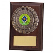 Shannon Cherrywood Plaque with Archery Insert