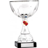 Silver Cup Trophy with Boxing Insert