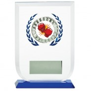 Multisport Glass Award with Boxing Insert