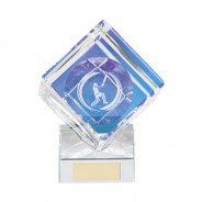 Victorious Cricket Cube Crystal Award