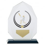 Glacier Cricket Glass Award