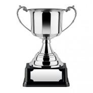 Revolution Award Nickel Plated Cup