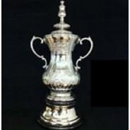 Prestigious Nickel Plated Championship Trophy