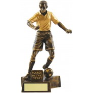 Player of the Year Football Trophy