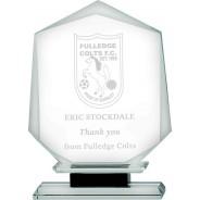 Clear Glass Shield on Black Base Award