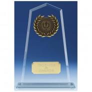 Tower Jade Award