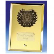 Crest Mirror Gold Plaque