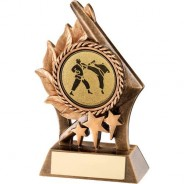 Bronze/Gold Leaf and Stars with Martial Arts Insert Trophy
