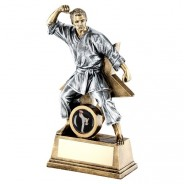 Bronze / Gold Male Martial Arts Figure with Star Backing