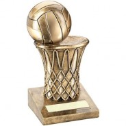 Bronze/Gold Netball and Net Trophy