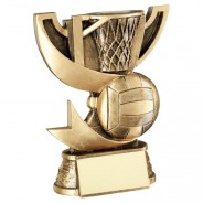 Bronze/Gold Cup Range For Netball Trophy