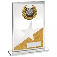 Gold/Silver Glass Plaque With Silver/Black Trim Trophy