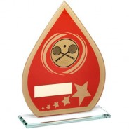 Red/Gold Printed Glass Teardrop with Squash Insert Trophy