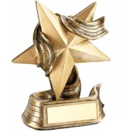 Bronze/Gold Star And Ribbon Award Trophy