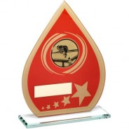 Red/Gold Printed Glass Teardrop with Pool/Snooker Insert Trophy