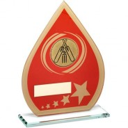 Red/Gold Printed Glass Teardrop with Cricket Insert Trophy