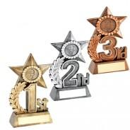 Leaf And Star Award Trophy