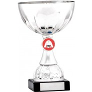Silver Cup Trophy with Martial Arts Insert