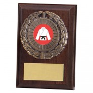 Shannon Cherrywood Plaque with Martial Arts Insert