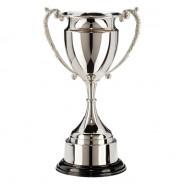 Kensington Nickel Plated Cup