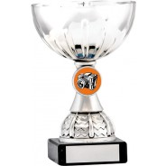 Silver Cup Trophy with Photography Insert