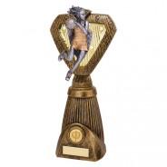 Hero Frontier Netball Award