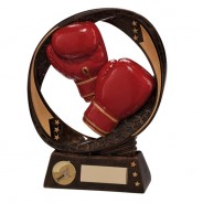 Typhoon Boxing Award