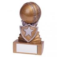 Shield Cricket Mini Award