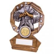 Enigma Martial Arts Award