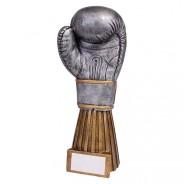 Challenger Boxing Award