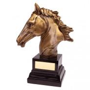 Belmont Equestrian Award