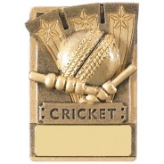 Mini Magnetic Cricket Award