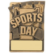 Mini Magnetic Sports Day Award