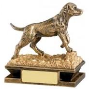 Gundog Award