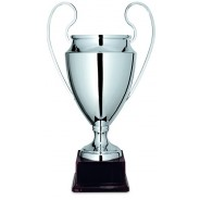Silver Cup with Handles on Plastic Base