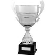 Silver Presentation Cup on Black Base